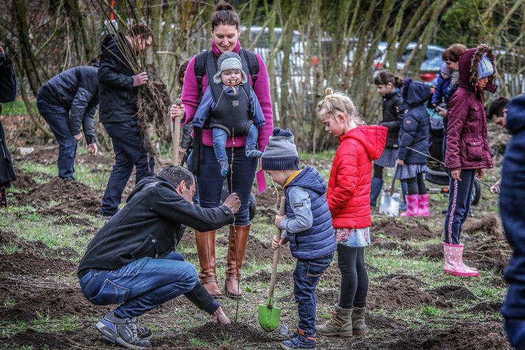 Op 23 november, op de 'Dag van de Natuur,  wordt het geboortebosje in het Hamiltonpark, dat deze zomer per vergissing gemaaid werd, opnieuw aangeplant.
