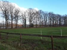 Winterswijk zet in op  eerste marathon op natuurijs