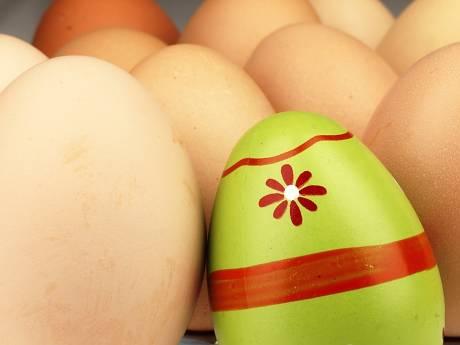 Voor de klas: druk knutselen aan kippetjes, gekleurde eieren en paashaasjes van watten
