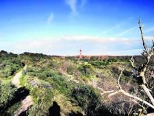 Stichting Duinbehoud slaat alarm over Schouwse kust