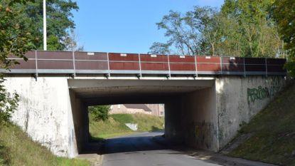 Doorgang brug Banhagestraat afgesloten tot eind augustus