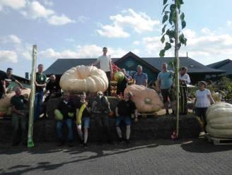 Wouter 'Pompoen' De Wever doet het opnieuw: derde plaats op Open Pumpkin-Wiegemeisterschaft in Lohmar