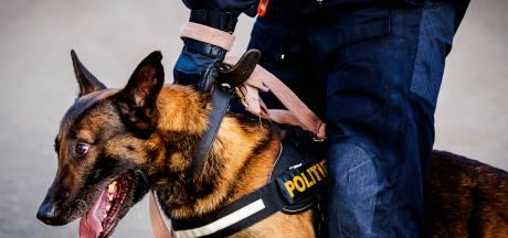 Man (44) uit Oosterhout doet mislukte inbraakpoging in Chaam en wordt opgepakt