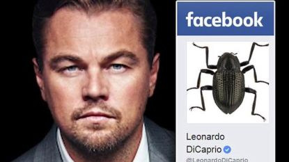Deze nieuwe diersoort werd vernoemd naar Leonardo DiCaprio