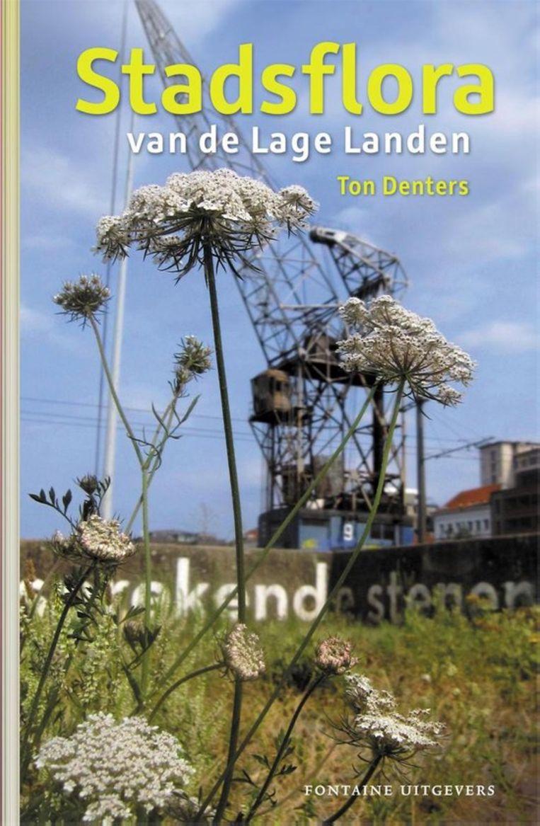 Non-fictie Ton Denters Stadsflora van de Lage landen Fontaine Uitgevers, € 34,99, 448 blz. Beeld