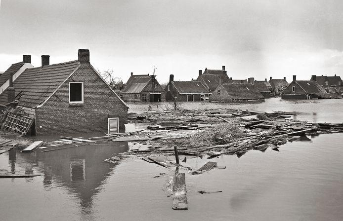 Ondergelopen huizen in de omgeving van Yerseke op archiefbeeld.