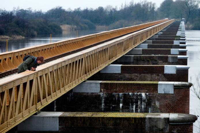 José Borsboom op haar favoriete plek: de Moerputtenbrug in natuurgebied De Moerputten.
