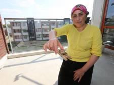 Bewoners Waterkwartier in Zutphen klaar met ratten