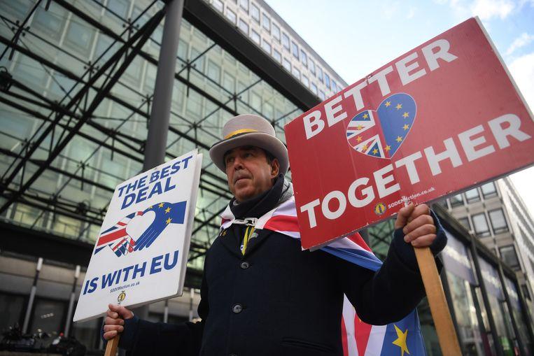 Een tegenstander van de brexit demonstreert in Londen. Beeld EPA