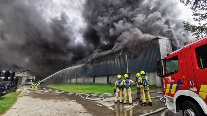 """Zware uitslaande brand legt kippenbedrijf in de as, manege blijft nipt gevrijwaard: """"Levenswerk van Wim is in vlammen opgegaan"""""""