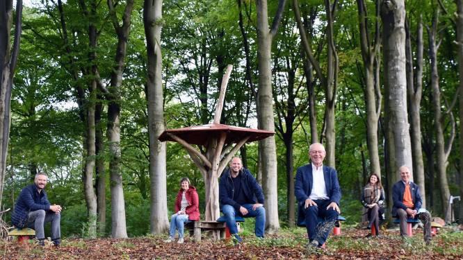 """Lubbeek blijft inzetten op meer groen: """"3,4 hectare extra bos op jaar tijd"""""""