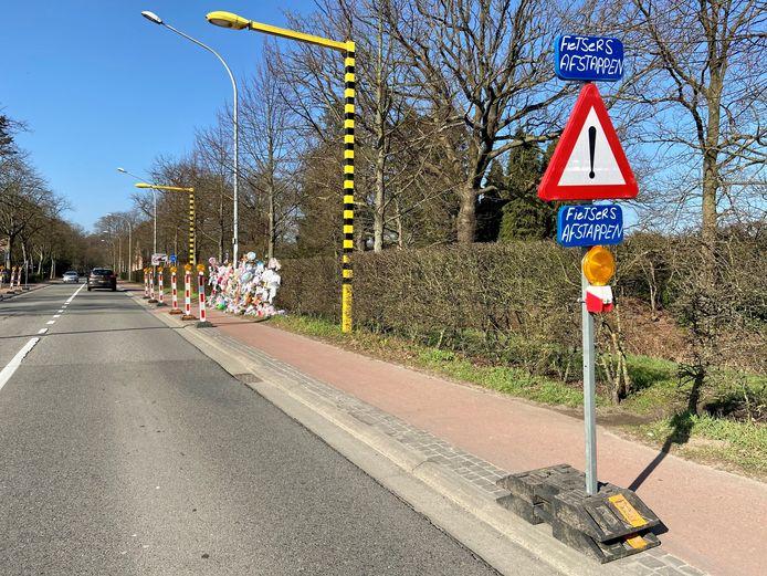 Horstebaan ter hoogte van de Amerlolaan. Twee professoren in mobiliteit hebben voorstellen hoe het kruispunt, waar fietsertje Loes (7) in februari verongelukte, aan te pakken