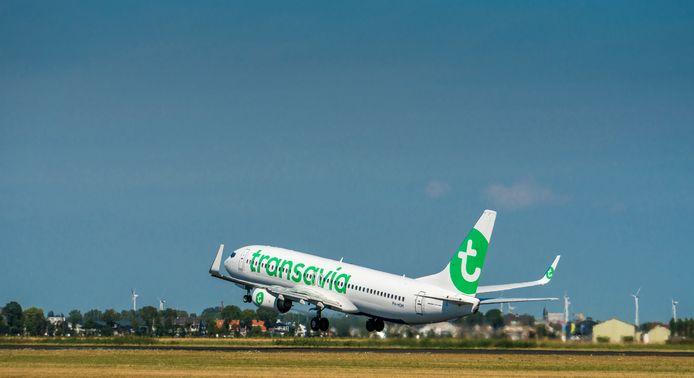 Een vliegtuig van Transavia stijgt op van luchthaven Schiphol.