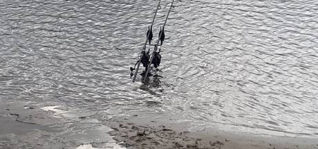 Agenten betrappen vissers in verboden gebied bij 't Hilgelo: 'Normaal komen we geen politie tegen'