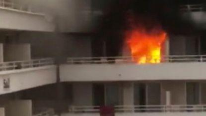 Hotelgasten in Magaluf aan de dood ontsnapt : dronken Britten veroorzaken brand op hun kamer