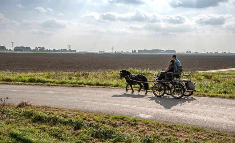 De Groningen Ulsderpolder. De geploegde grond op de achtergrond zou bestemd worden voor de bouw van een zonneweide. Beeld Harry Cock
