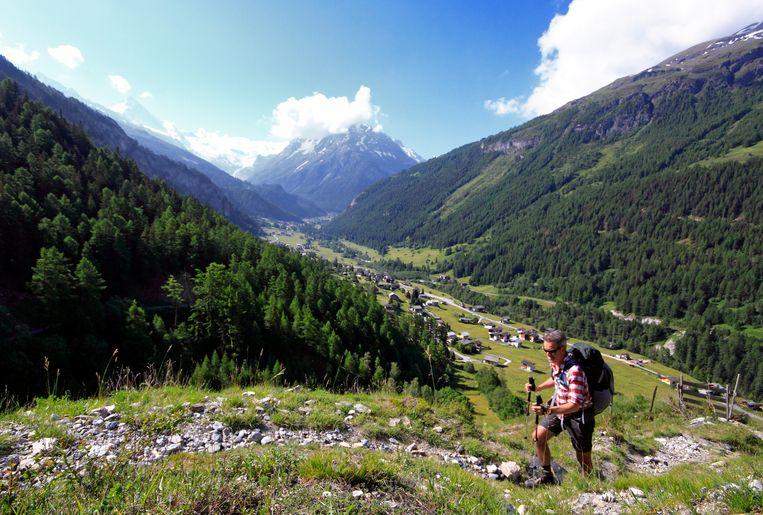 Onderweg naar de bergweiden boven Evolène. Beeld Jonathan Vandevoorde