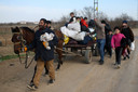 Migranten met paard en kar op weg naar de Grieks-Turkse grens.