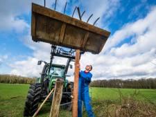 Veluwse boeren wapenen zich tegen vreetgrage edelherten