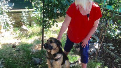 Burenruzie over hond zorgt voor petitie met meer dan 8.000 handtekeningen
