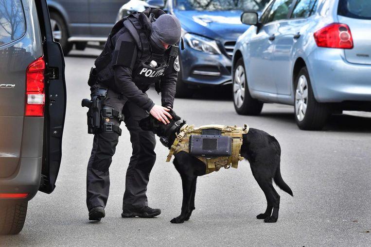 De politie zette ook honden in tijdens de jacht op de dader van de schietpartij in de Utrechtse tram. Beeld Robin Utrecht/ANP