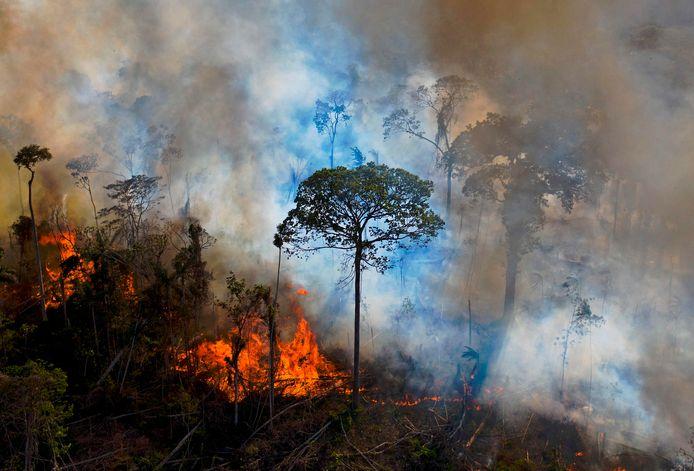 De meeste branden worden aangestoken om grond vrij te maken voor landbouw.