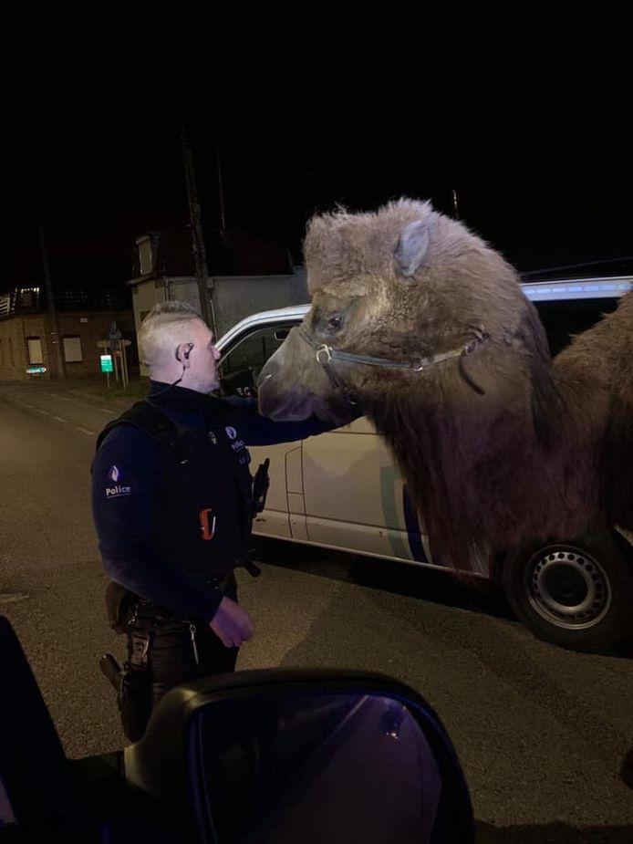 Intervention mémorable, pour la police