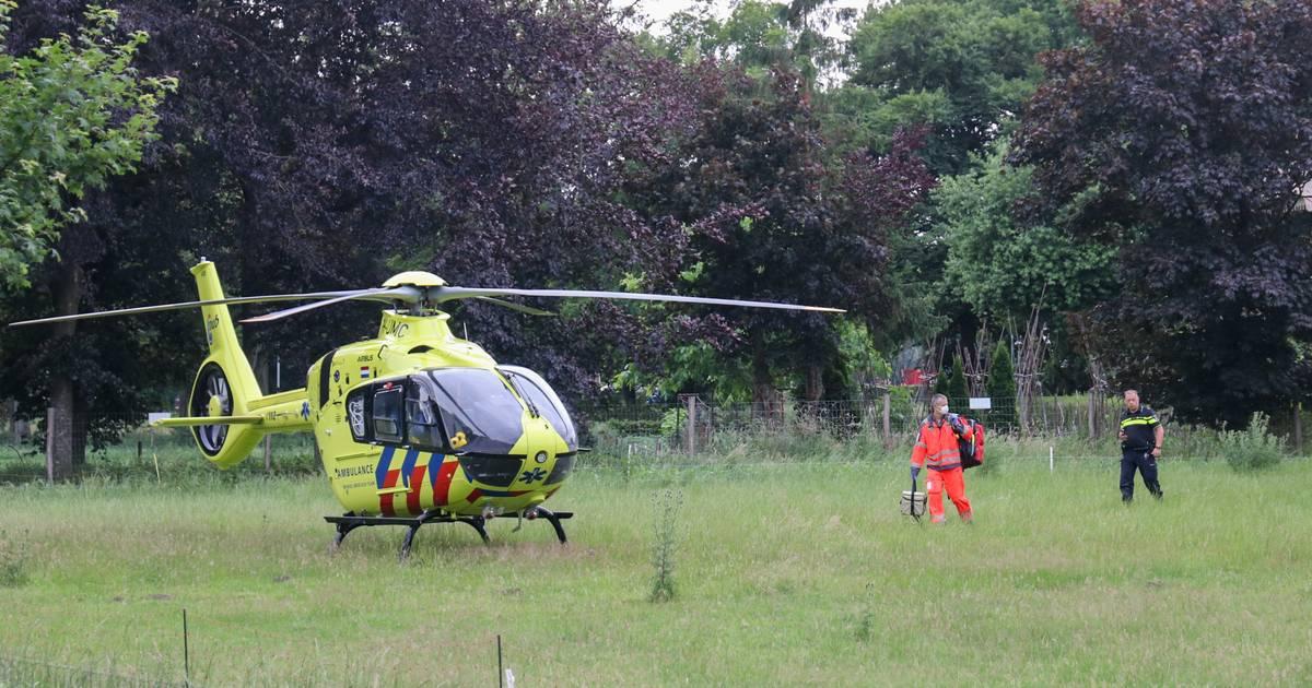 Jonge medewerker overleden door ongeval in kippenschuur.