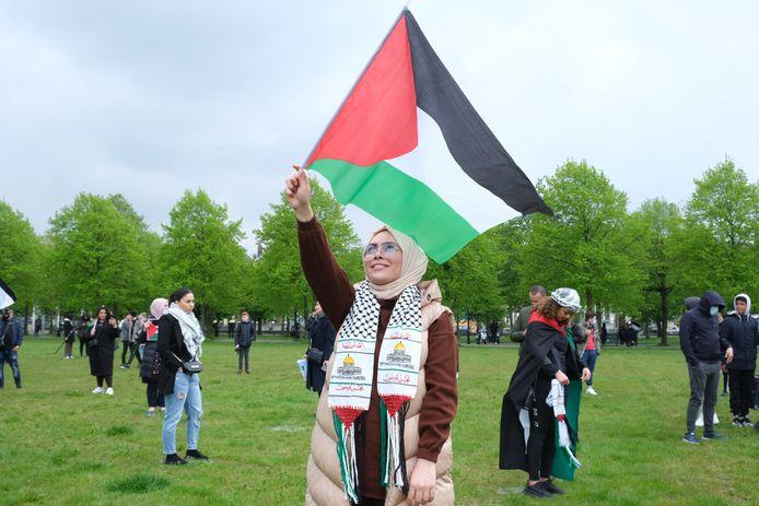 Pro-Palestinademonstratie op het Malieveld.