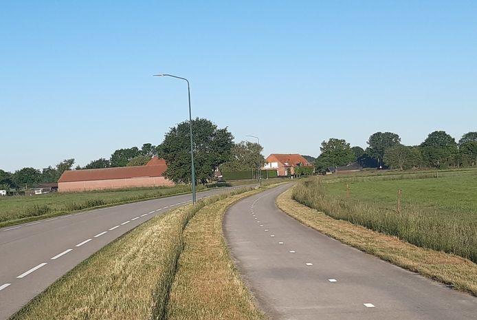 De middenberm en de beide bermen langs de Bavelseweg tussen Gilze en Molenschot zijn kaal gemaaid.