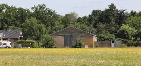 Steenuilenpaar vertraagt bouw Hoge Regt Oost in Beek en Donk