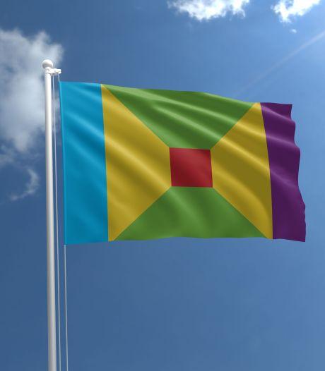 Nieuwe vlag voor Salland: Kiezen tussen paarse loper, blauwe S en gele korenaar als beeldmerk