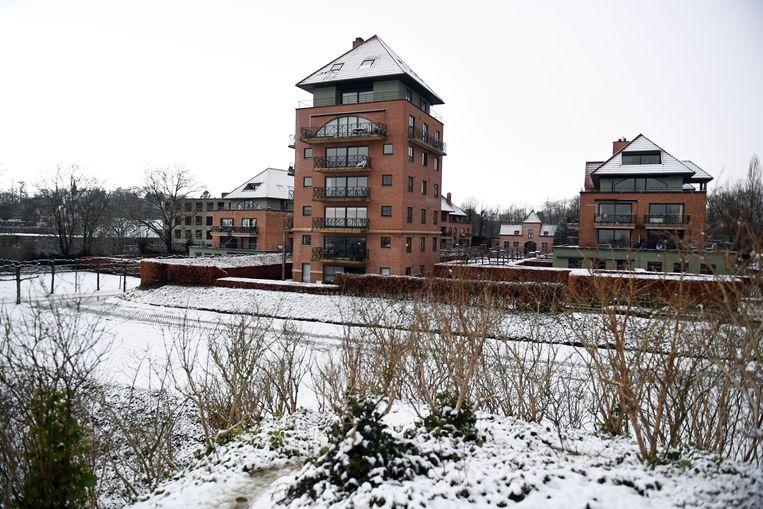 De sneeuw in de regio Leuven leverde rustgevende landschappen op.