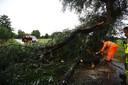 Op de Hanendorperweg in Emst kwam een boom op de weg terecht.