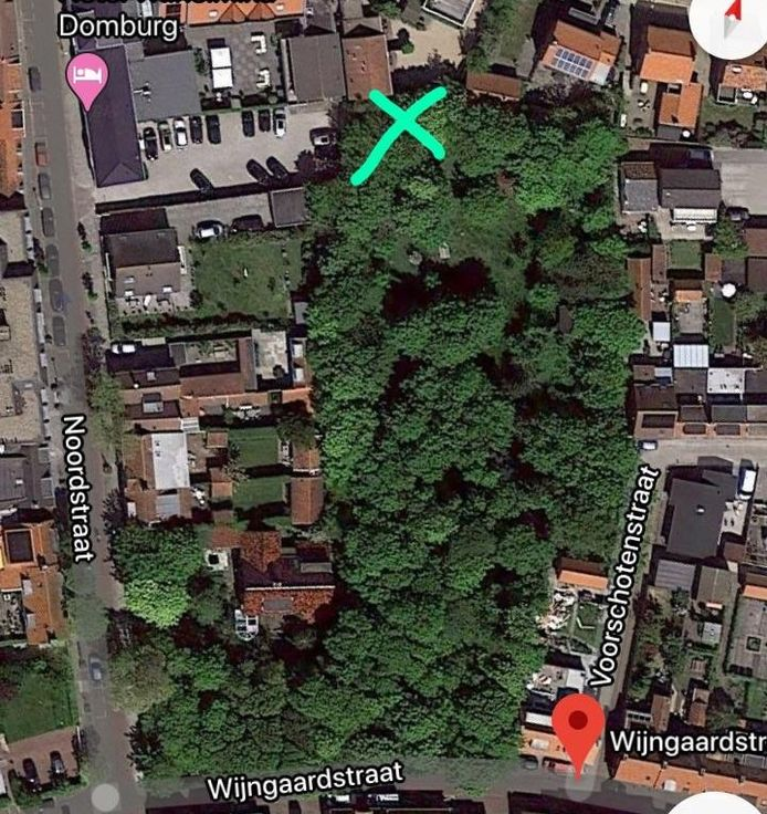 De plaats waar volgens raadslid Stijn van Kervinck bomen zouden zijn gerooid en een eeuwenoude aarden wal afgegraven.