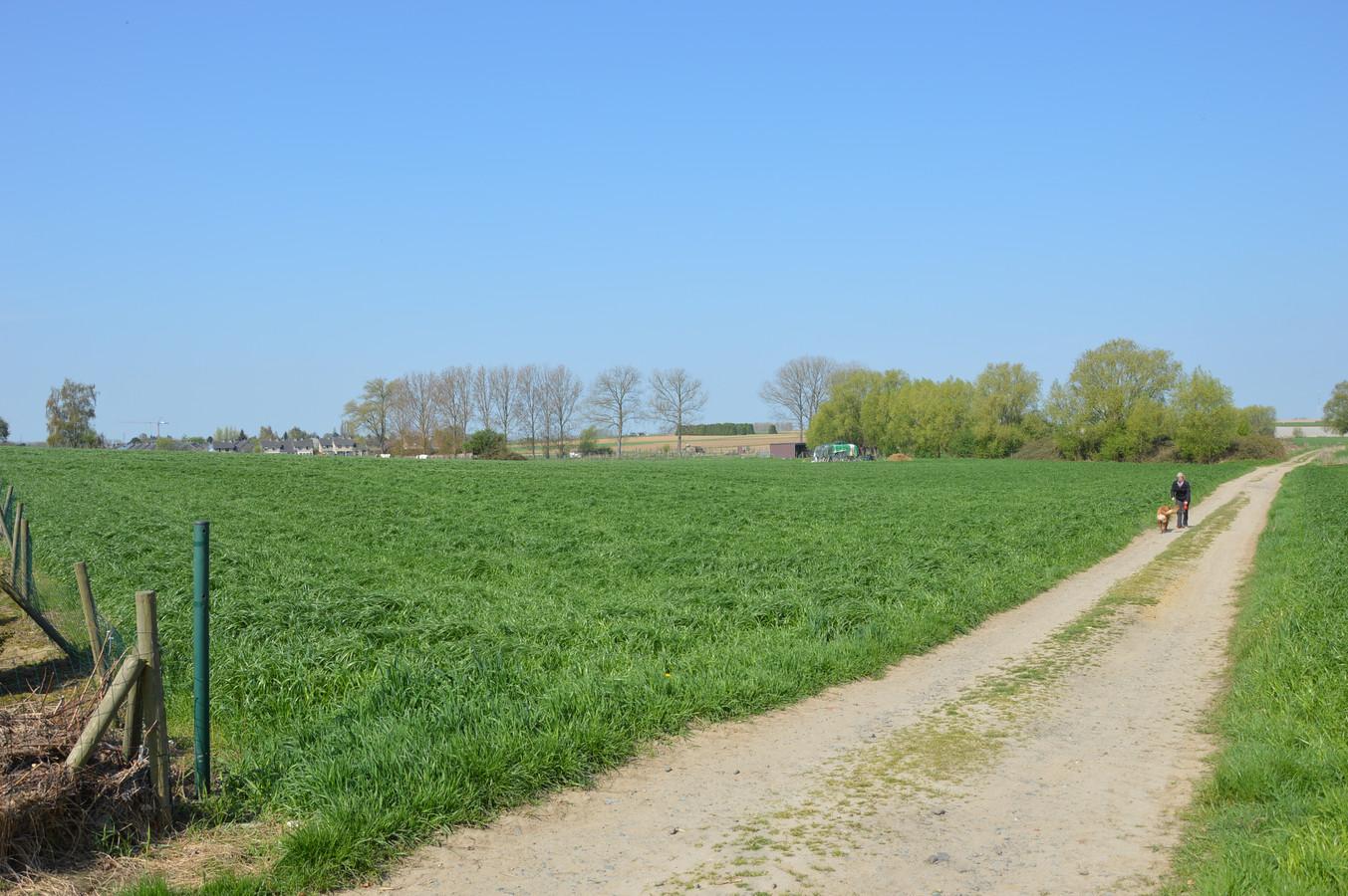 De kouter van Denderleeuw