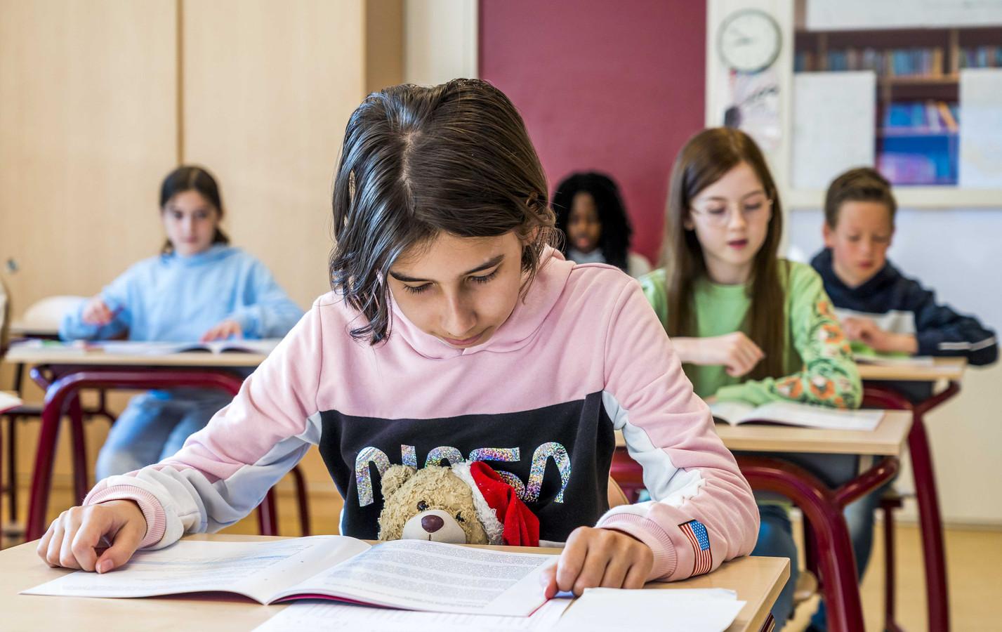 Leerlingen kunnen straks mogelijk privéles krijgen om achterstanden in te lopen.