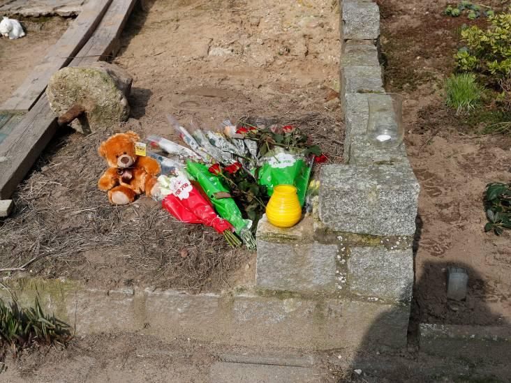 Stadse Fratsen: Van de Krokusstraat in 's-Heerenberg had ik nog nooit gehoord