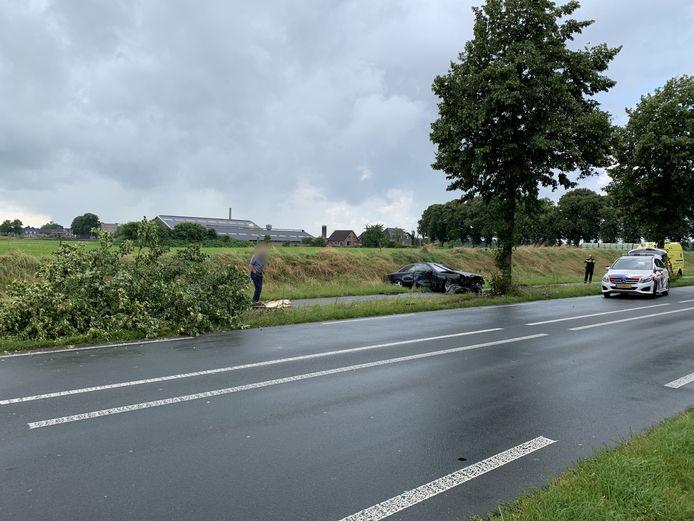 Een man kijkt naar een omvergereden boom langs de N317 tussen Ulft en Silvolde. De zwaar beschadigde auto kwam verderop tot stilstand.