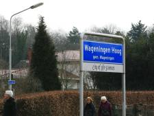 Weilanden rond Wageningen-Hoog blijven toch natuur