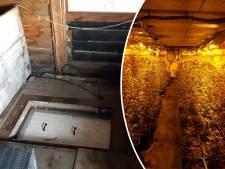 Burgemeester draait boel op slot na vondst enorme ondergrondse hennepkwekerij in Hulshorst