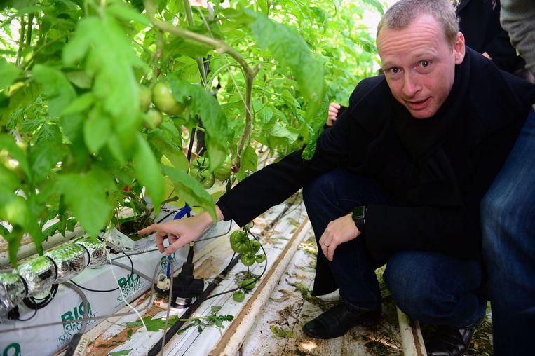 De sensor bij enkele planten in de school.