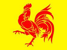 Le Coq wallon plus nationaliste que le Lion des Flandres?