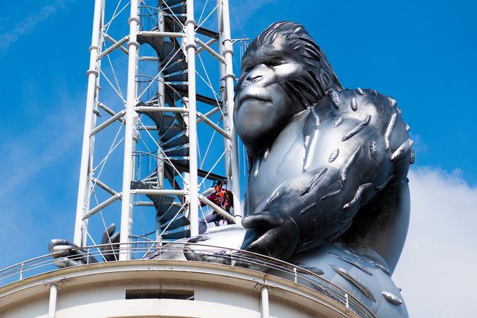 Gorilla Baboe - in de volksmond King Kong genoemd - is voor even van de toren van het stadhuis in Apeldoorn verdwenen. Oorzaak: de harde wind.