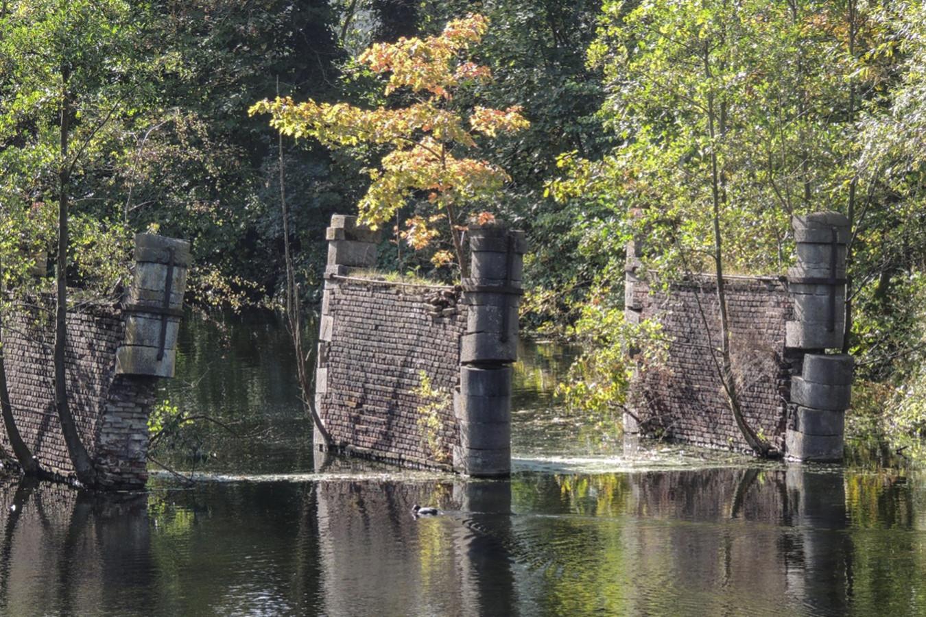 Ook de brugpijlers aan de Mechelse Poort worden geteisterd door wildgroei.