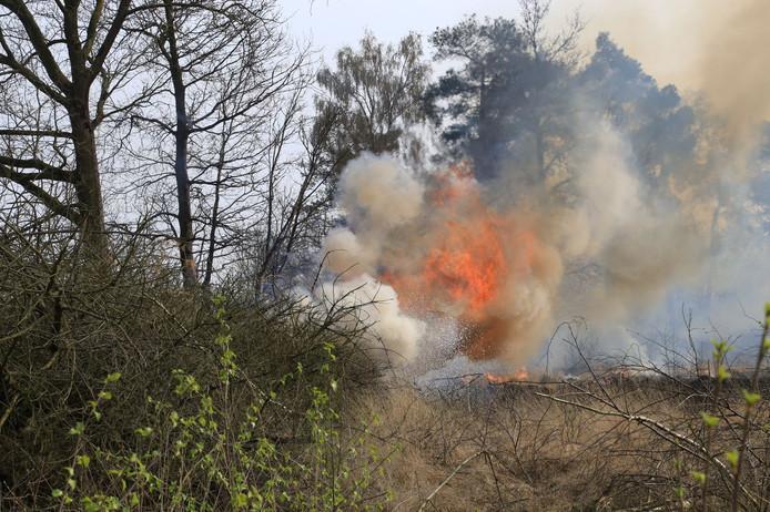 Natuurbrand bij Heeze in een gebied van 100 bij 100 meter.