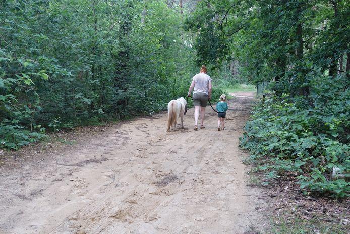 Via Carli's Ponyplezier kan je een pony huren om mee te wandelen