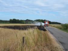 Brand in droog weiland Bergen op Zoom schroeit groot gedeelte weg