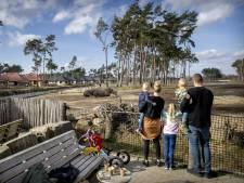 Vakantie dan maar in eigen land, liefst met wat luxe: 'Bezoekers laten zich goed verwennen'