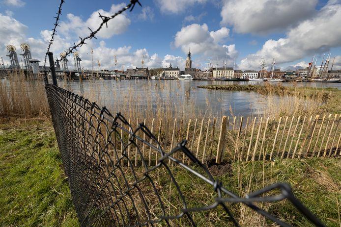 Het hek bij het stadsstrand in Kampen is te vroeg geplaatst. De gemeente heeft er nog geen vergunning voor verstrekt.